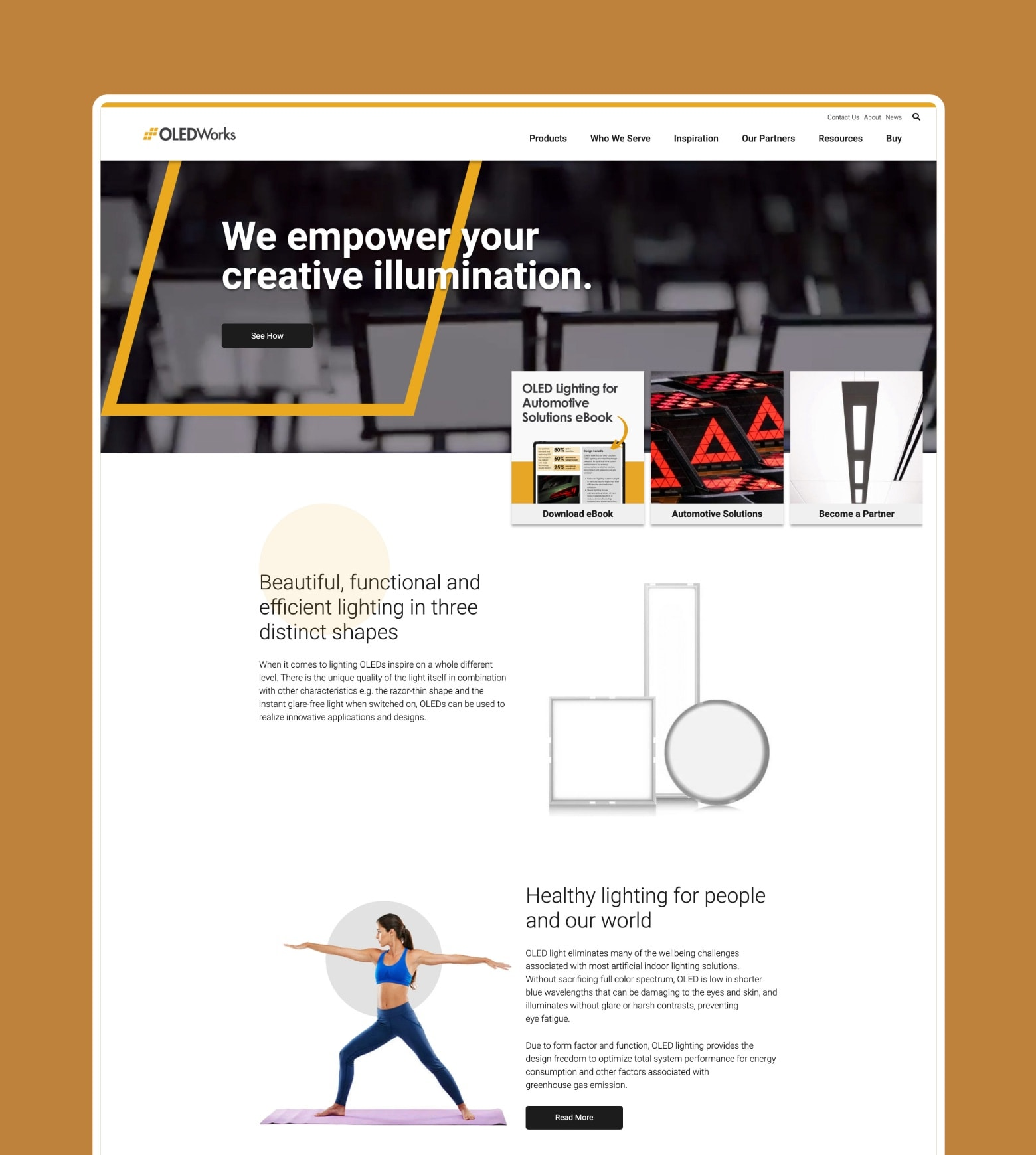 project OLEDWorks